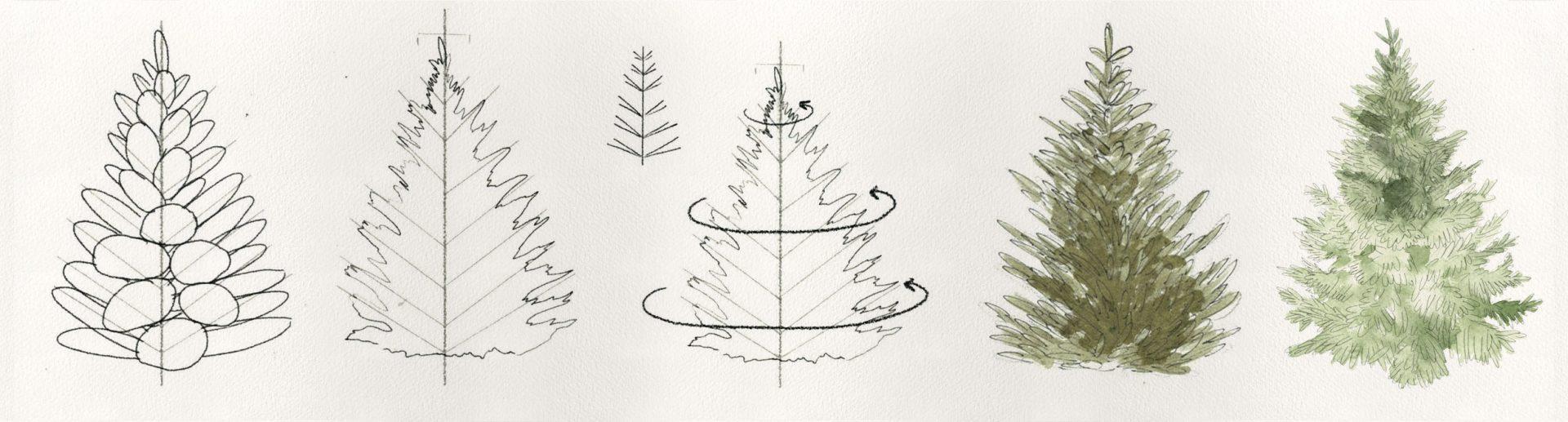 Trees Drawing Tutorials